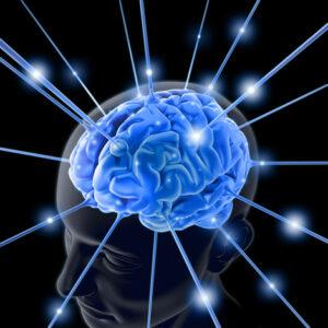 GABA補充品對過動及情緒行為的幫助